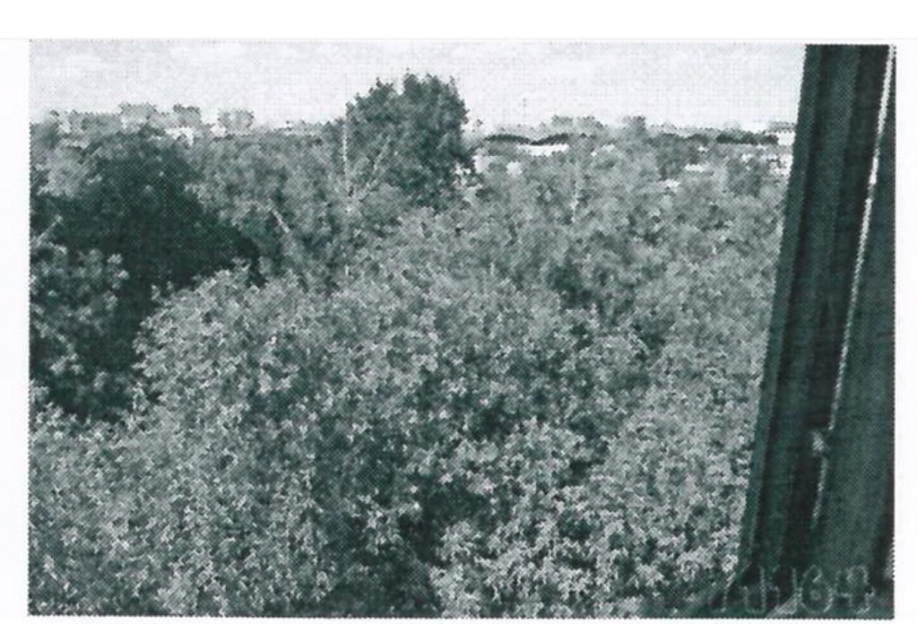 "Квартира в новостройке ЖК ""Wellton Park"", Москва, ул. Народного Ополчения - 1"
