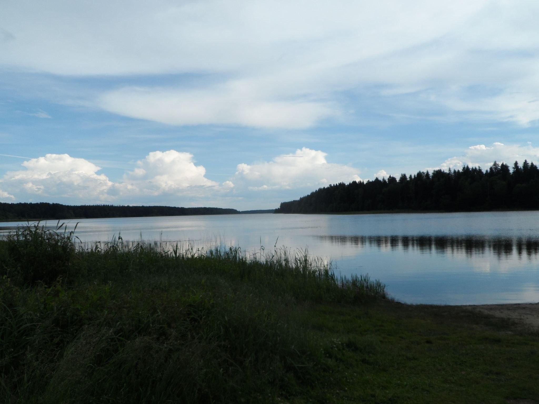 В Красногорском озере будут разводить форель
